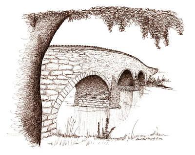 Sepia Ink Drawing - Witness Tree And Burnside Bridge by Daniel Paul Murphy