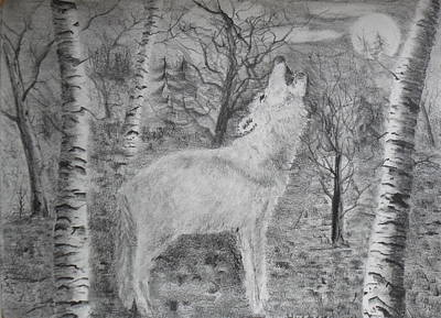 Drawing - Wolf by Brian Hustead