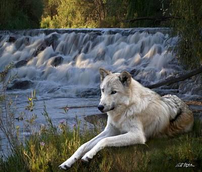 Wolf Falls Original by Bill Stephens