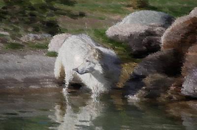 Wolf Art Print by Kevin Bone