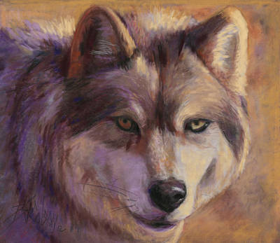Painting - Wolf Study by Billie Colson
