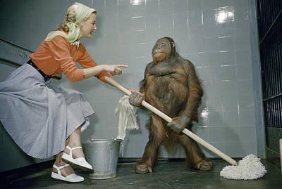 Woman Communicates With Orangutan Art Print by B. A. Stewart And David S. Boyer