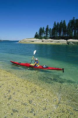 Woman Kayaking, Penobscot Bay, Maine Art Print by Skip Brown