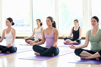 Woman Practicing Yoga Photograph - Women Practicing Yoga In A Class by Assembly