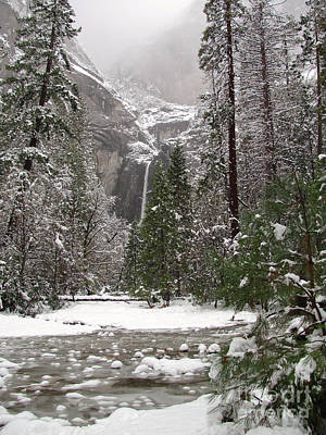 Photograph - Wonderland Yosemite by Heidi Smith