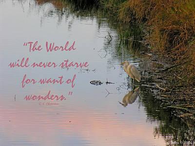 Photograph - Wonders by Grace Dillon