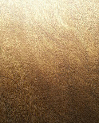 Wood Grain Photograph - Wood Backdrop by Lumina Imaging