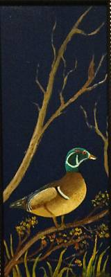 Art Print featuring the painting Wood Duck by Al  Johannessen