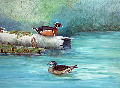 Wood Duck Painting - Wood Ducks by Rose McIlrath