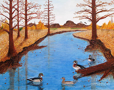 Wood Ducks On Jacobs' Creek Art Print