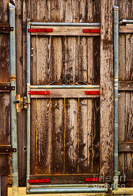 Photograph - Wood Fence Door by James BO Insogna