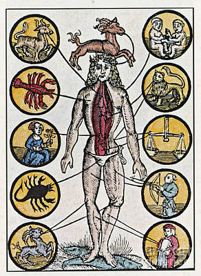 Photograph - Woodcut With Medical Zodiac by Science Source