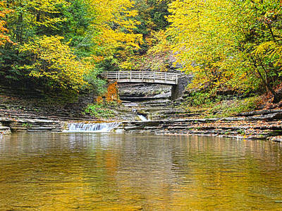 Wooden Bridge And Yellow Leaves Art Print by Joshua House