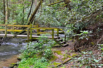 Photograph - Wooden Footbridge by Carol  Bradley