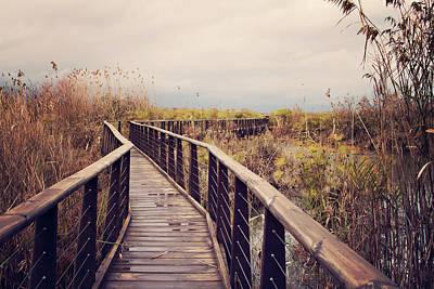 Wooden Path On The Lake Art Print by Copyright Anna Nemoy(Xaomena)