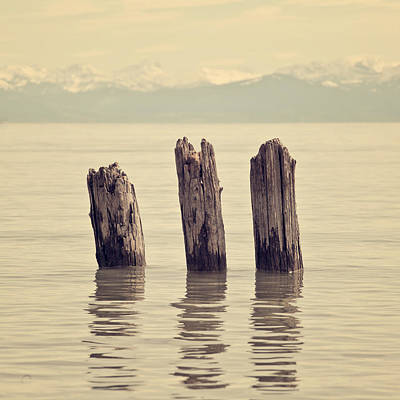 Mountain View Photograph - Wooden Piles by Joana Kruse