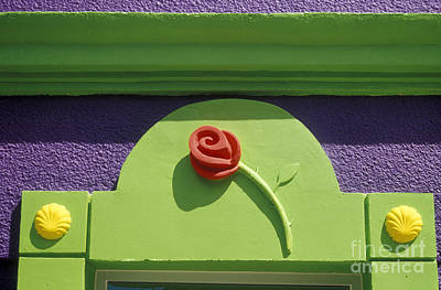 Photograph - Wooden Rose San Jose Del Cabo Baja by John  Mitchell