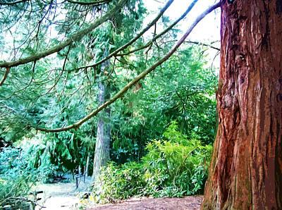 Woodland And Huge Tree Illustration Original