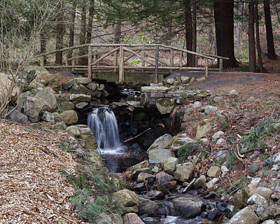 Photograph - Woodland Falls by Margie Avellino
