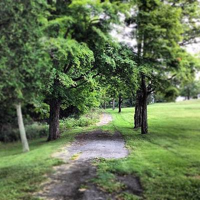Woodland Photograph - #woodland #forest #green #trees #path by Shannon Ferguson