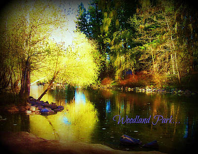 Photograph - Woodland Park by Deahn      Benware