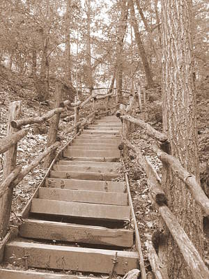 Photograph - Woodland Stairs In Sepia by Richard Reeve
