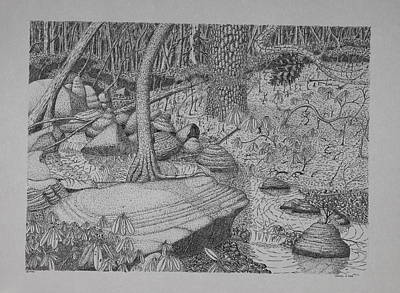 Drawing - Woodland Stream by Daniel Reed