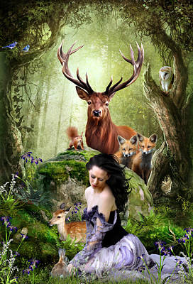 Bluejay Digital Art - Woodland Wonders by Julie L Hoddinott