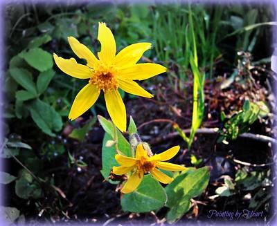 Photograph - Woods Flower by Deahn      Benware