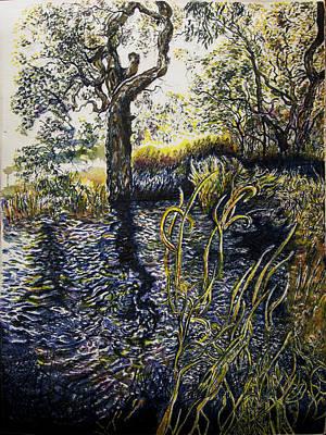 Wetlands Drawing - Wooli Lake Hiawatha by Helen Duley
