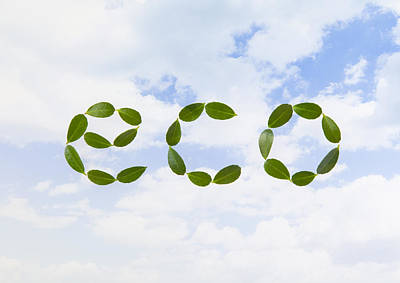 Y120831 Photograph - Word eco Made Of Leaves by sozaijiten/Datacraft