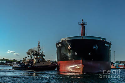 Photograph - Working Tug by Jorgen Norgaard