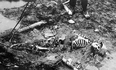 World War I, Skeleton Of A Dead German Art Print by Everett