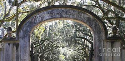 Photograph - Wormsloe Plantation Gate Panorama by Carol Groenen
