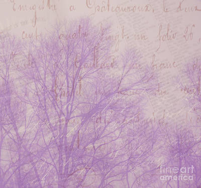 Photograph - Written On The Wind by Judi Bagwell