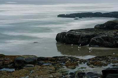 Photograph - Yachats Coastline by Margaret Pitcher