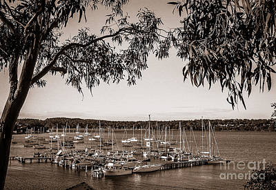 Photograph - Yachts On The Lake At Toronto by Fran Woods