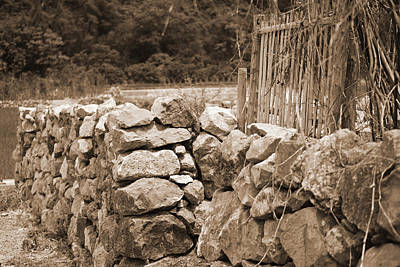 Photograph - Yangdi - An Old Fence by Harvey Barrison