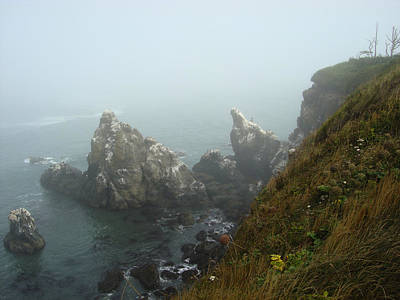 Photograph - Yaquina Headlands Towards Cape Foulweather by Glenna McRae