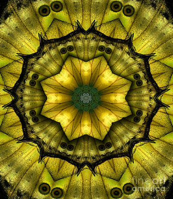Yellow Butterfly Wing Kaleidoscope Mandala Art Print
