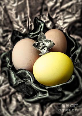 Photograph - Yellow Classy Easter Egg by Danuta Bennett