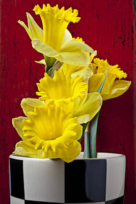 Yellow Daffodils Photograph - Yellow Daffodils In Checkered Vase by Garry Gay