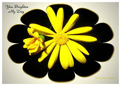 Photograph - Yellow Daisy - You Brighten My Day by Joyce Dickens