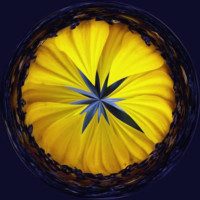 Tickseed Photograph - Yellow Flower 2 by Skip Nall