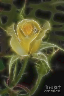 Yellow Fractalius Rose Print by Deborah Benoit