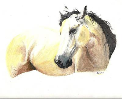 Windblown Drawing - Yellow Horse by Jessica Raines