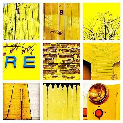 Yellow Photograph - Yellow by Julie Gebhardt