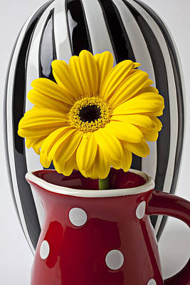 Petals Lifestyle Photograph - Yellow Mum In Pitcher  by Garry Gay