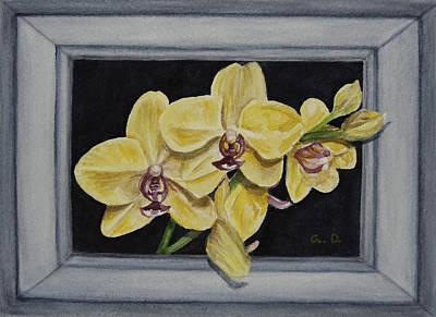 Yellow Orchid At Night Trompe Loeil Art Print by Gail Darnell