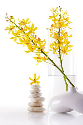 Merchandise Photograph - Yellow Orchid Bunchs by Atiketta Sangasaeng